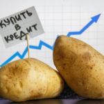 Почему картофель стал самым подорожавшим продуктом за год