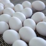 Эксперт оценил риски низких закупочных цен на яйца