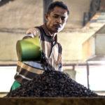 Почему кофе тоже будет дорожать